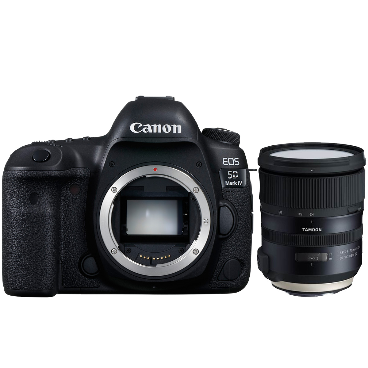 Canon EOS 5D Mark IV + Tamron SP 24-70mm 1:2,8 VC USD G2
