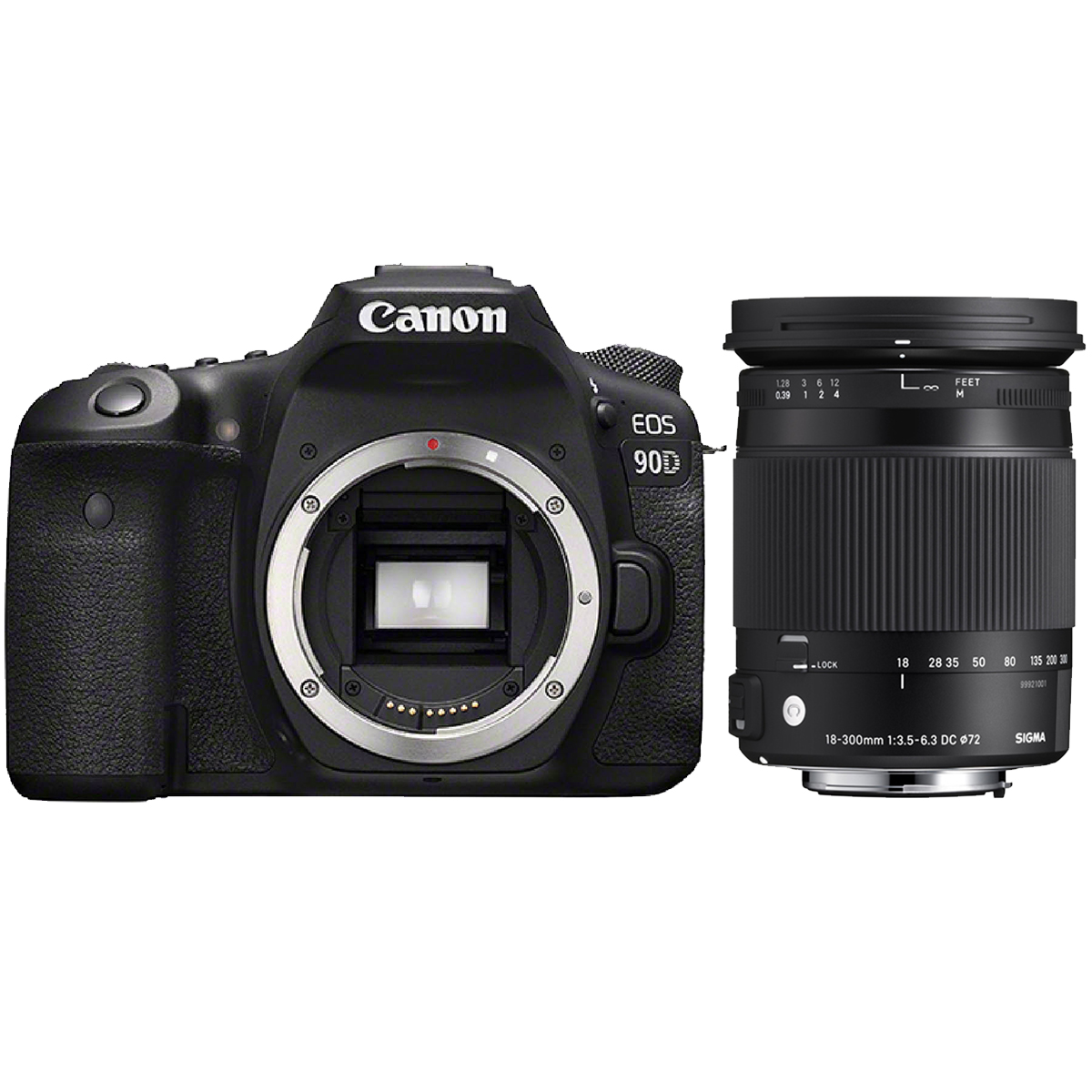 Canon EOS 90D + Sigma 18-300mm 3,5-6,3 DC Makro OS HSM C